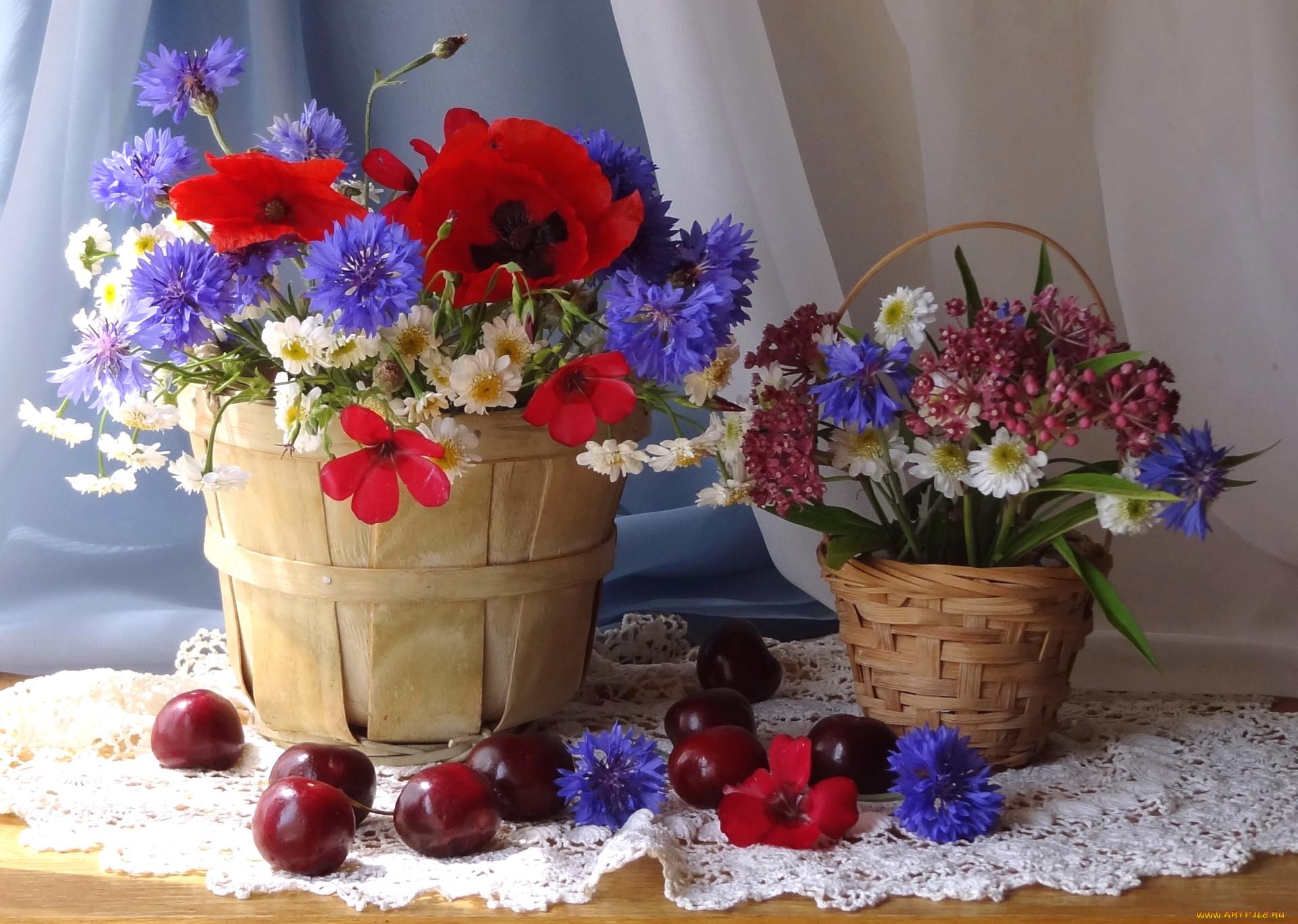 картинки с полевыми цветами и ягодами пчелы
